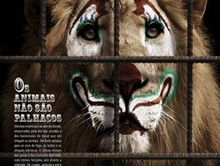 DECRETO Nº 13.630, DE 23 DE JULHO DE 2015- Circo em Fortaleza