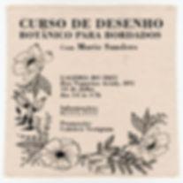 curso de denho botanico para bordado ves
