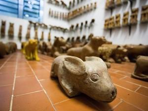 Manoel Cavalcanti de Almeida, mais conhecido como Manoel da Marinheira, foi um dos mais importantes escultores brasileiros que fez história na pequena Boca da Mata, Alagoas