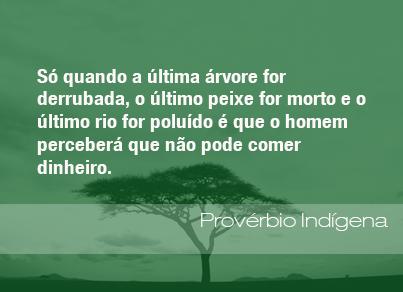frases-indigena-130513
