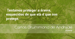 frases-andrade-100713