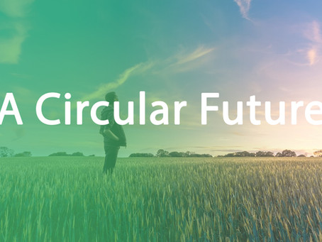 The Circular Economy: A Quick Guide