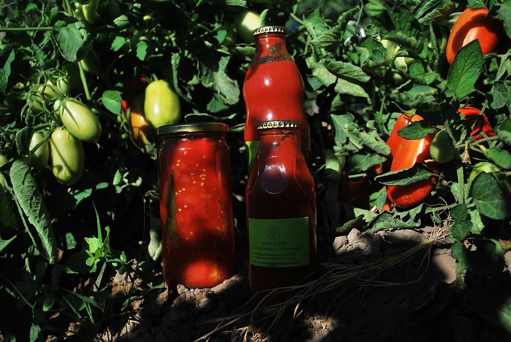 salsas y tomates ingredientes de la Olla