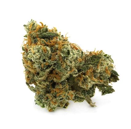 Blue Boy 27%THC