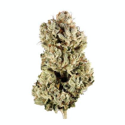 GORILLA GLUE THC 28.0%