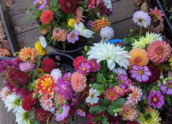 SEPTEMBER 2021 Dahlias and More Weekly Pick Up Subscription