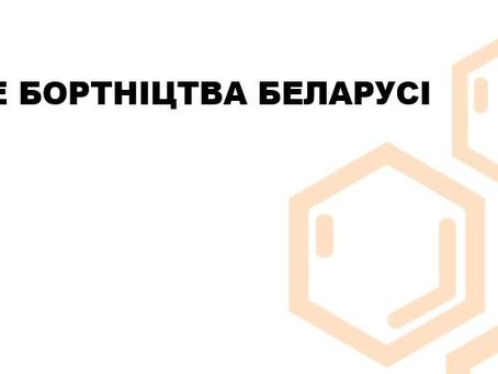 Лясное бортніцтва Беларусі