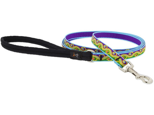Lupine Party Time Lead