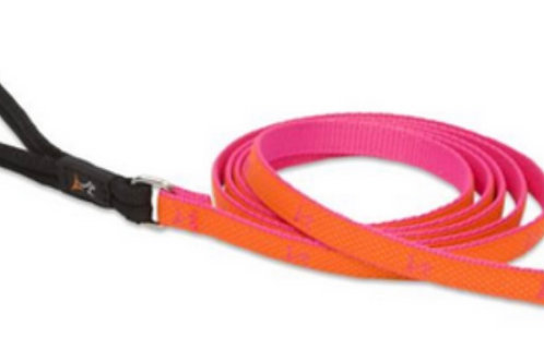 Lupine Club Sunset Lead