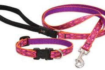 Lupine Aspen Glow Collar
