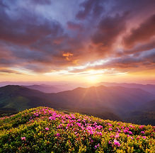 bigstock-Mountains-During-Flowers-Bloss-