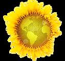 logo locavores site internet 2.png
