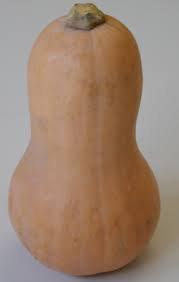butturnut