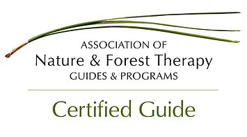 ANFT-Certified-Guide-Logo-Medium.png