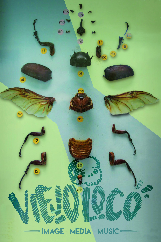 ViejoLoco.Cartel.Escarabajo.1.0
