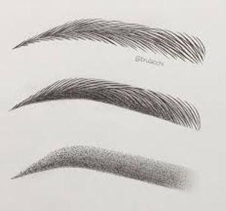 brow drawing.jpeg