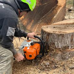 A&R Tree Service
