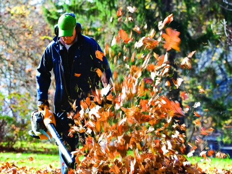 10 Must-Do's For Fall Yard Clean Up