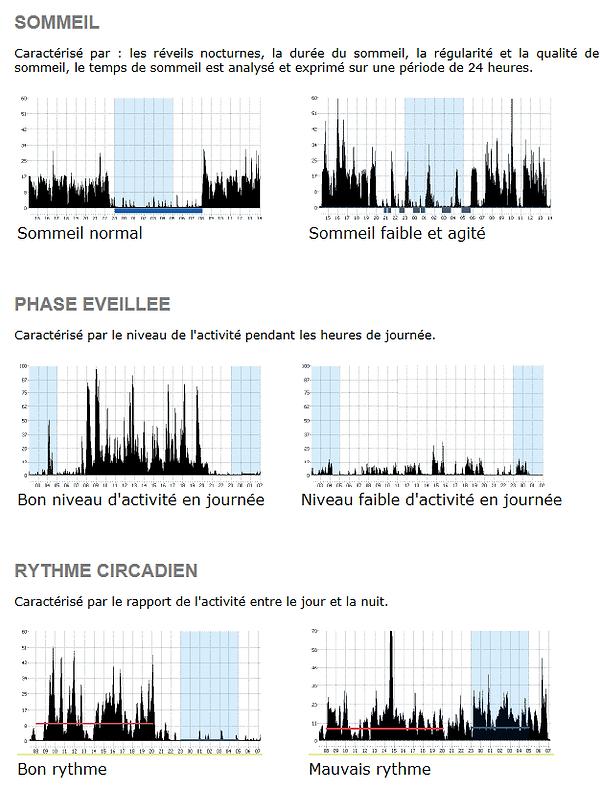 Ecran courbes : sommeil, activité, rythme circadien