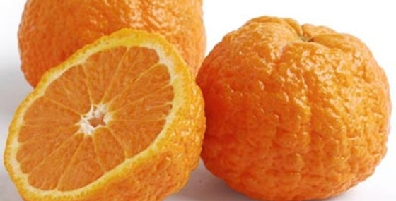 Tangerines (Gold Nugget™)