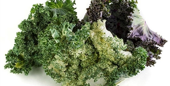 Salad Savoy®