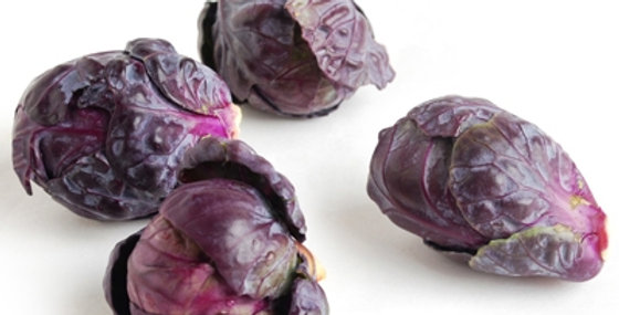 Brussels Sprouts (Purple)