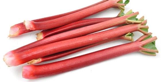 Rhubarb (Field Grown)