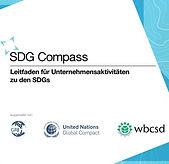 SDG Compass.JPG