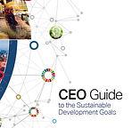 CEO Guide SDGs.JPG