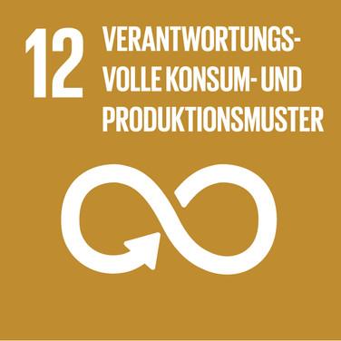 SDG 12 Verantwortungsvolle Konsum- und Produktionsmuster