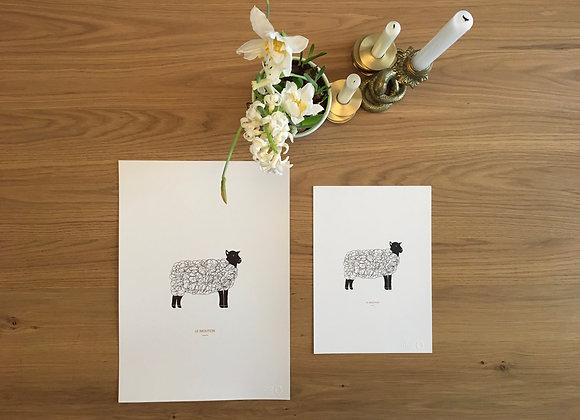 Le Mouton A3