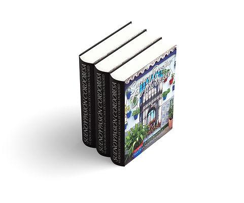 Thick_Book_Mockup_OK_2.jpg