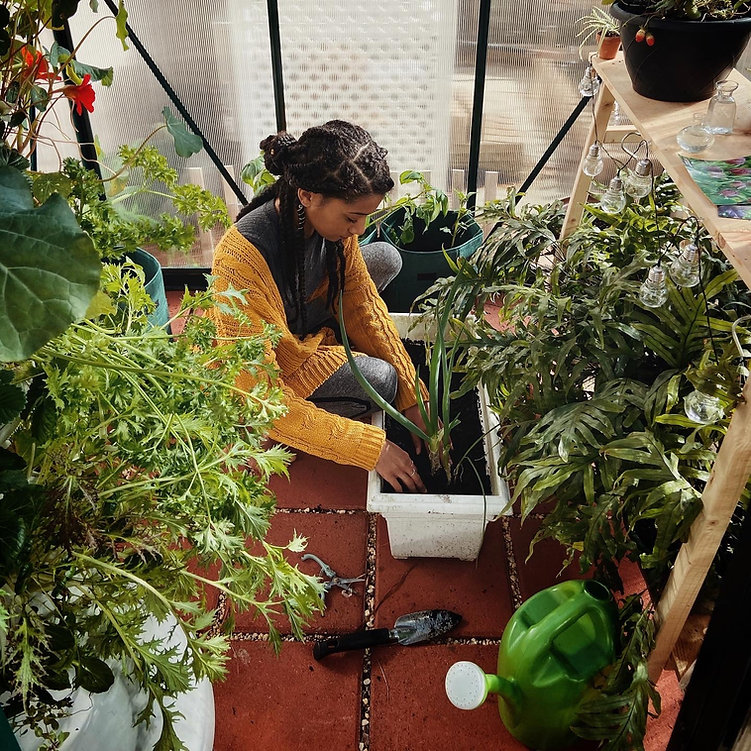 greenhouse phot.jpg