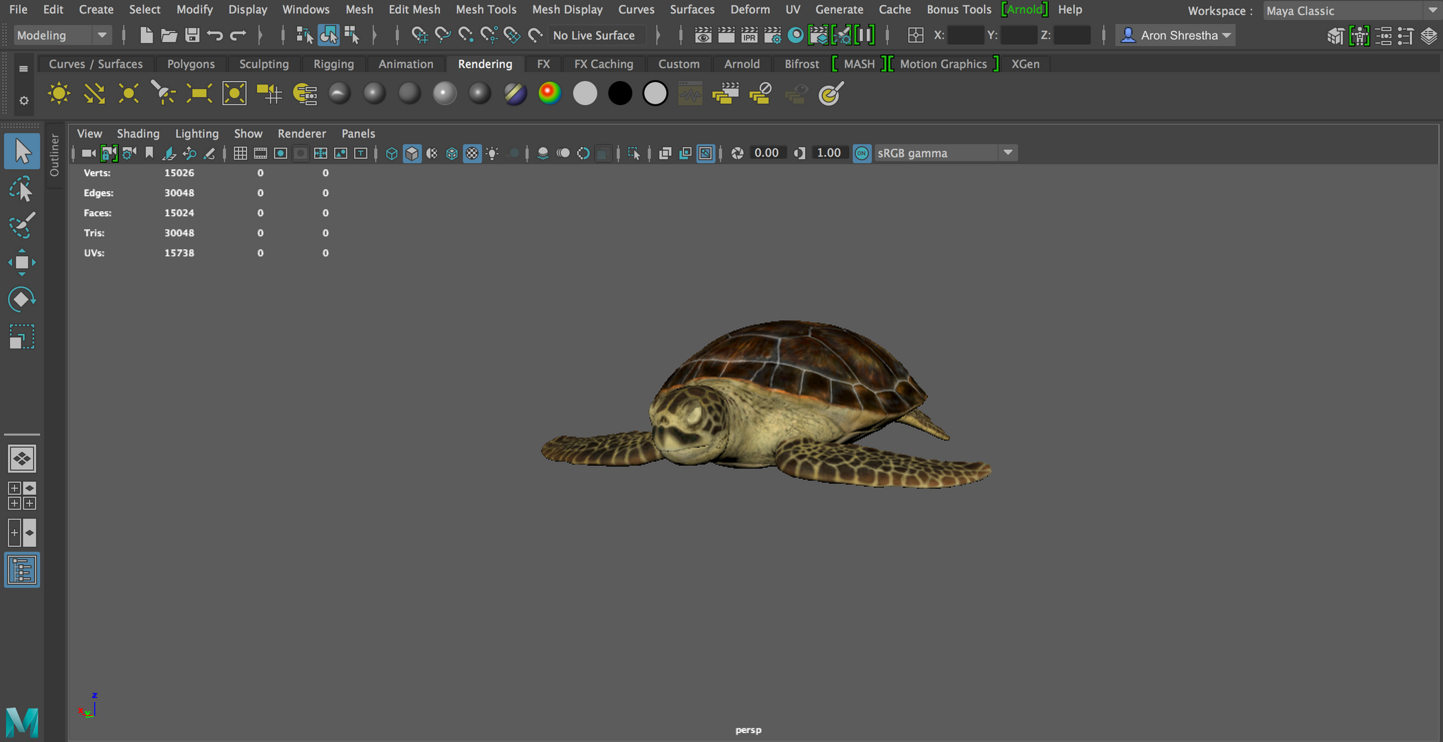 Turtle Rendered.png