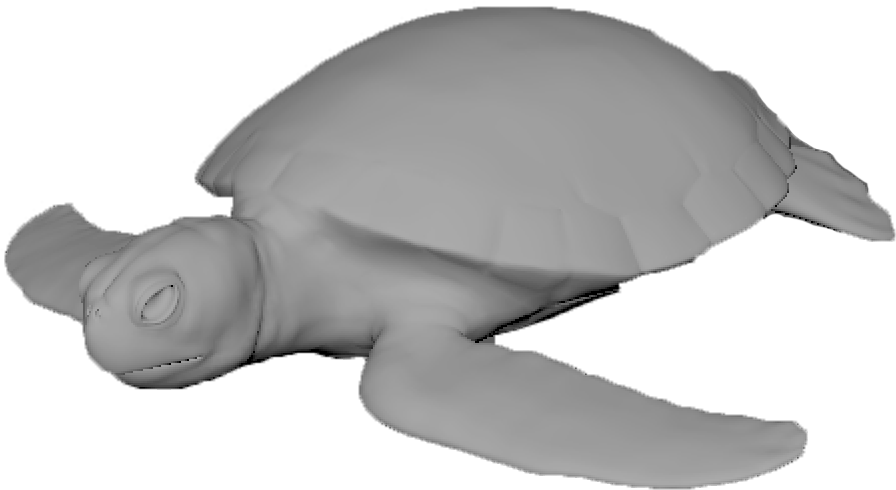 Turtle Base copy.png