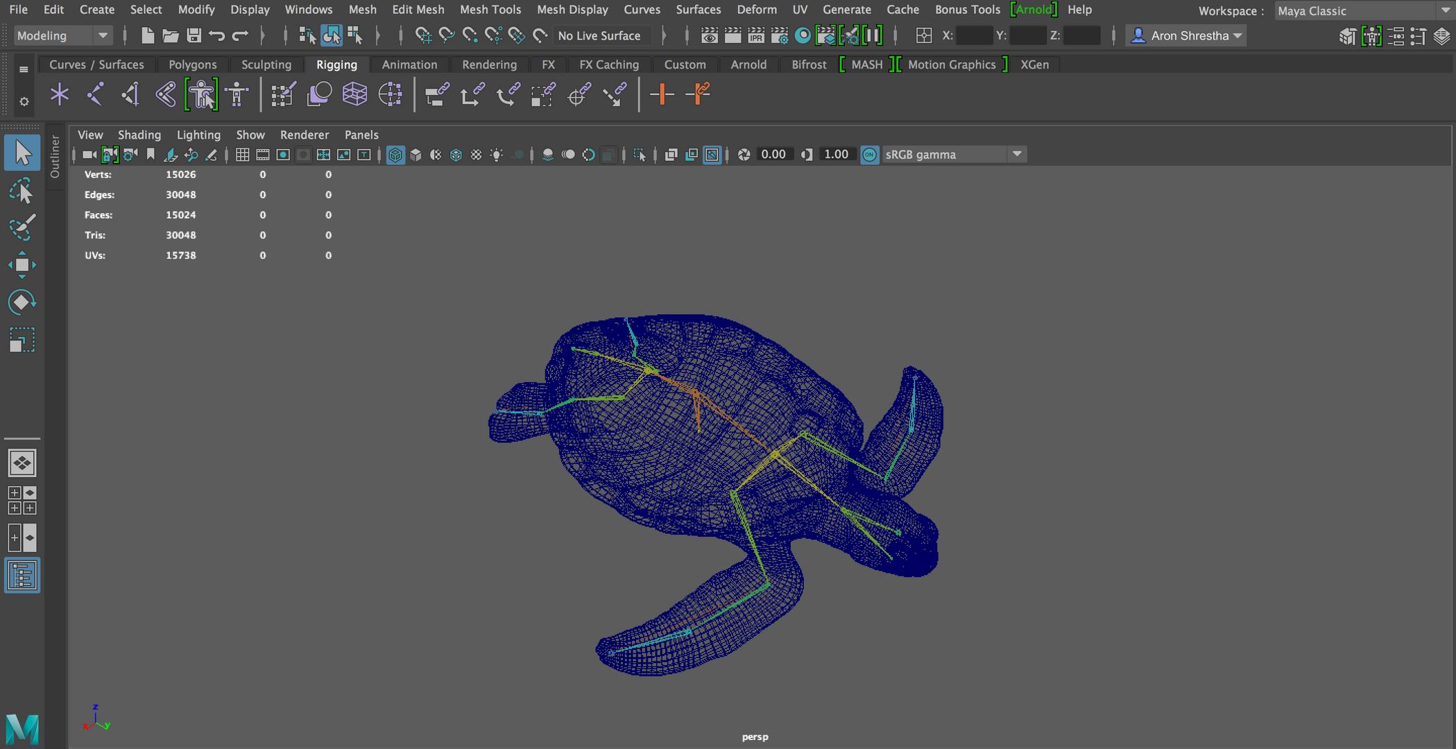 Turtle Skeleton.png