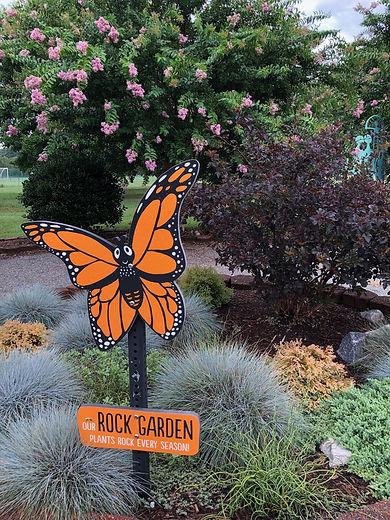 Rock garden.jpeg