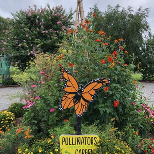 Pollinator's Garden at Grin & Grow