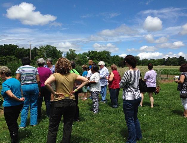 A Visit to Lisa Ziegler's Flower Farm