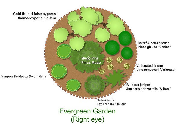 Evergreen Fall 2020.jpeg