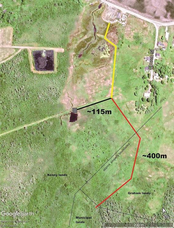 Big Meadow Bog trail