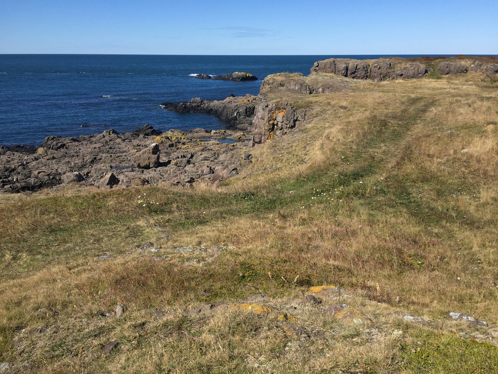 Bay of Fundy from Coastal Trail.jpg