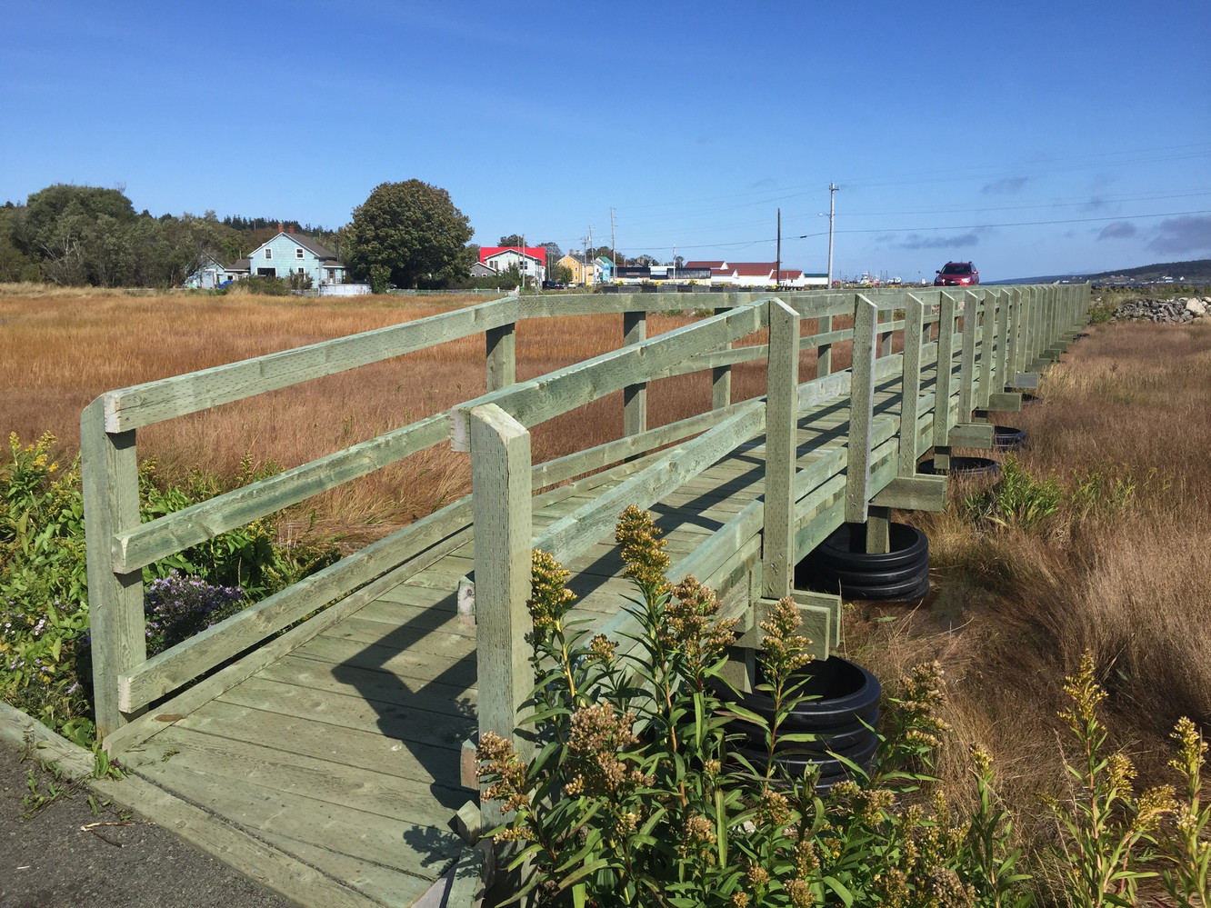 The boardwalk back to the car park