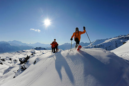 Skiers in snow, sun and blue sky