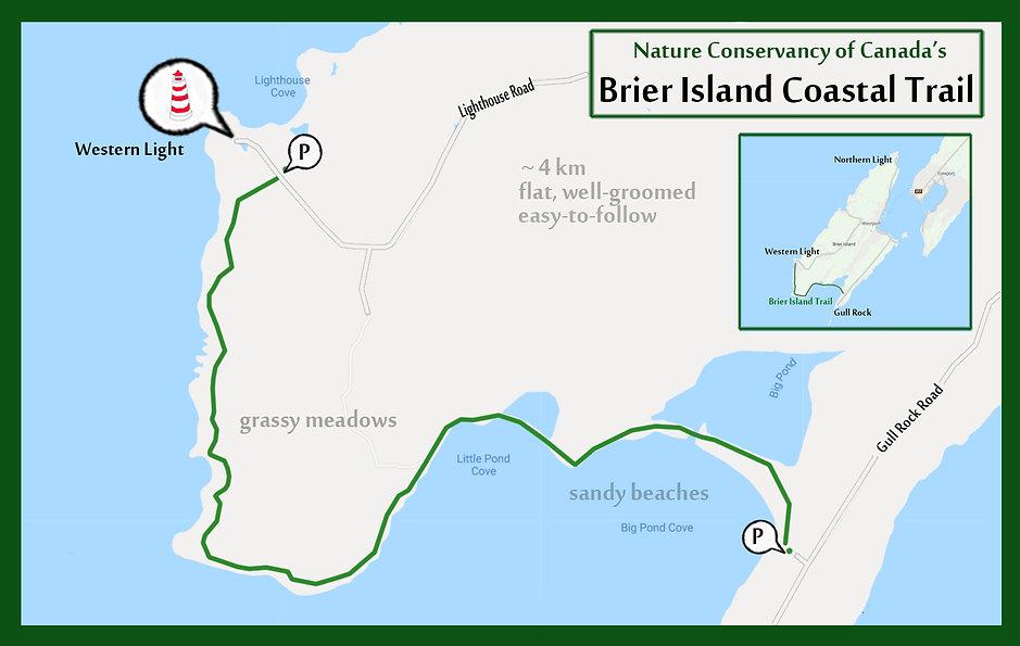 Brier_Island_coastal_trail