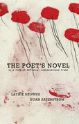 The Poet's Novel