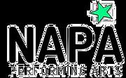 NAPA%20logo%20Transparent%20background_e