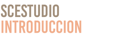 Texto Introduccion.png