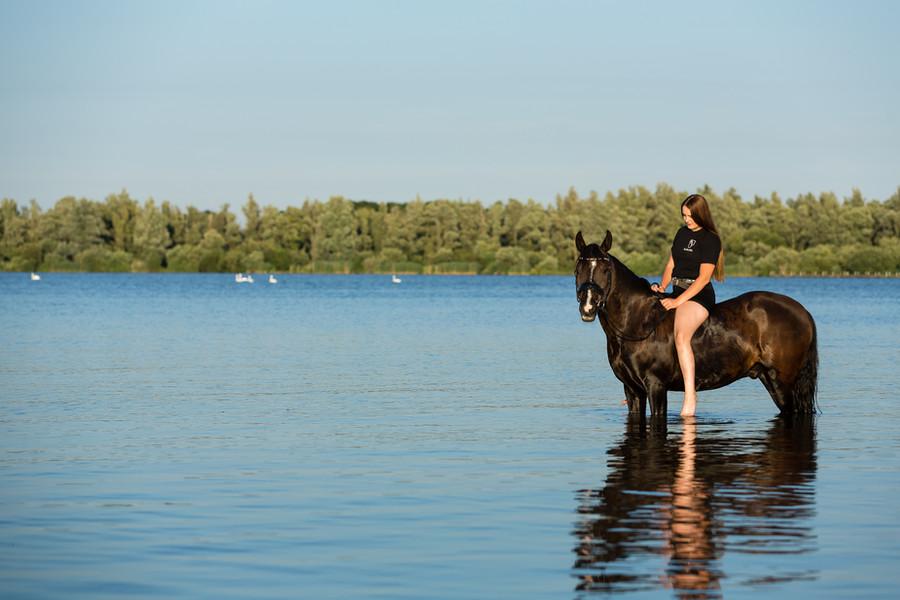 Paarden shoot Robin Thoma Fotografie