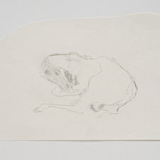 'Horse as Seashell as Sleeping Saint', 2020, graphite on paper. Photograph by Simon Mills.
